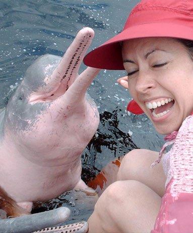Кханом - обитель розовых дельфинов