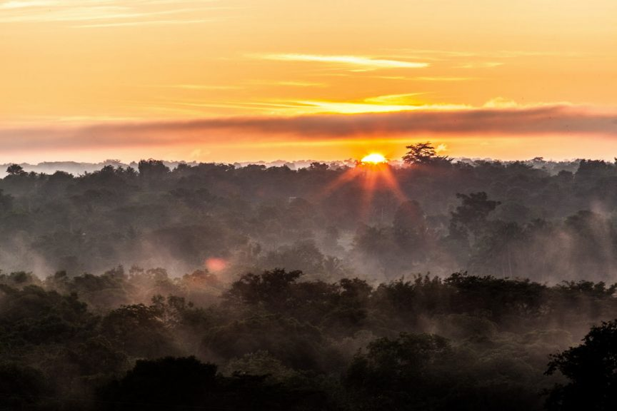 Национальный парк Удавалаве