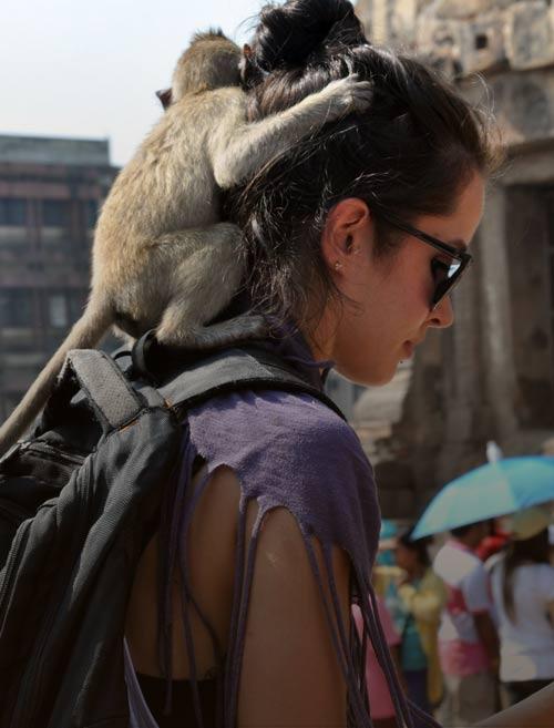 Маршруты по Северу Таиланда (6 вариантов маршрутов)