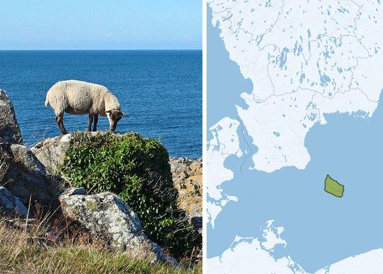 Регионы Дании